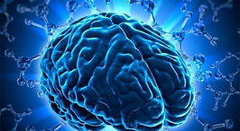 cervell blau.jpg
