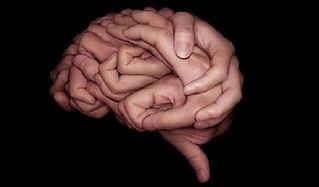 cervell.jpg