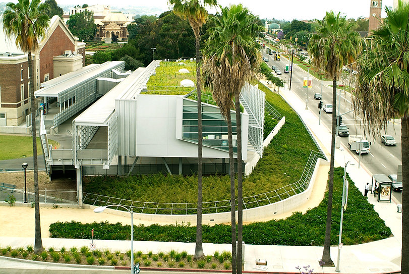 expo roof.jpg