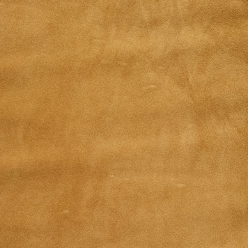 Color Ochre