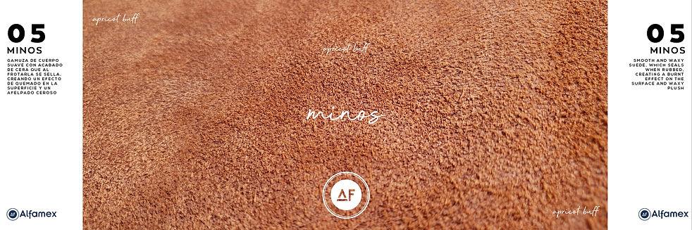MINOS-APRICOT.jpg