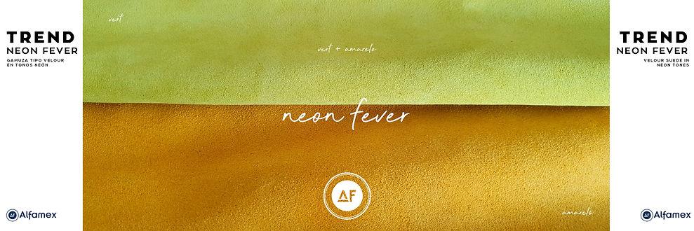 Base-de-los-tres-archivos-neon-fever-vet