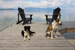 montana-outdoors-explore-dogs-dock-flath