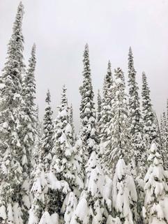 montana-outdoors-explore-snowy-winter-tr