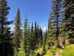montana-outdoors-explore-hike-forest-mou