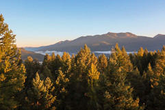montana-outdoors-explore-forest-mountain