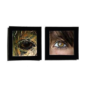 face paint eyes.jpg