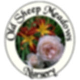 Old Sheep Logo.jpg