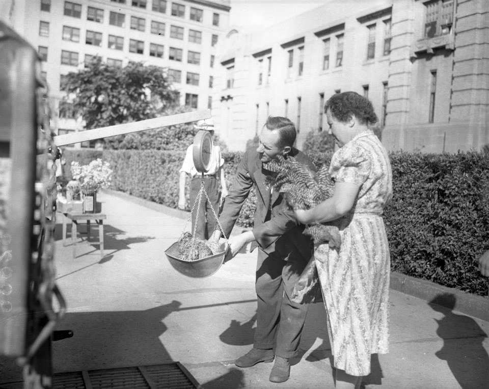 Portland Farmers' Market 1958