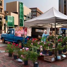 At Market.jpg