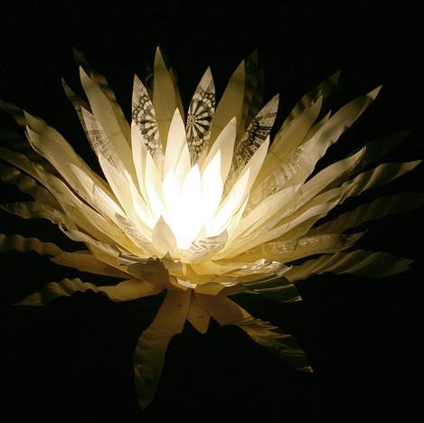VYGIE LAMP