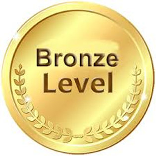 Bronze Level $250 to $499