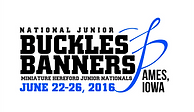 Buckles & Banners 2016.png