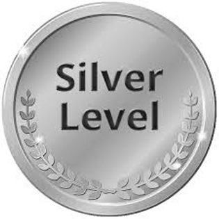 Silver Level $500 to $999