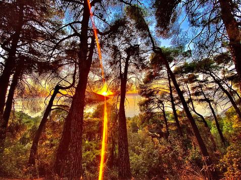 Autumnal sunsets