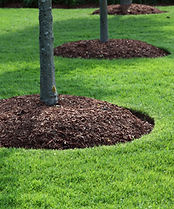 Brown Enviro Mulch