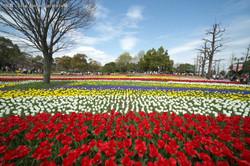 木曽三川公園②