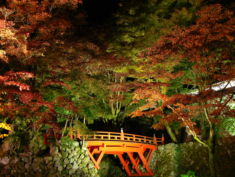 両界山横蔵寺①