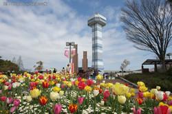 木曽三川公園①
