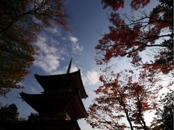 真禅院-三重塔