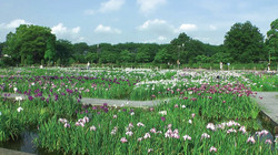 曽根城公園