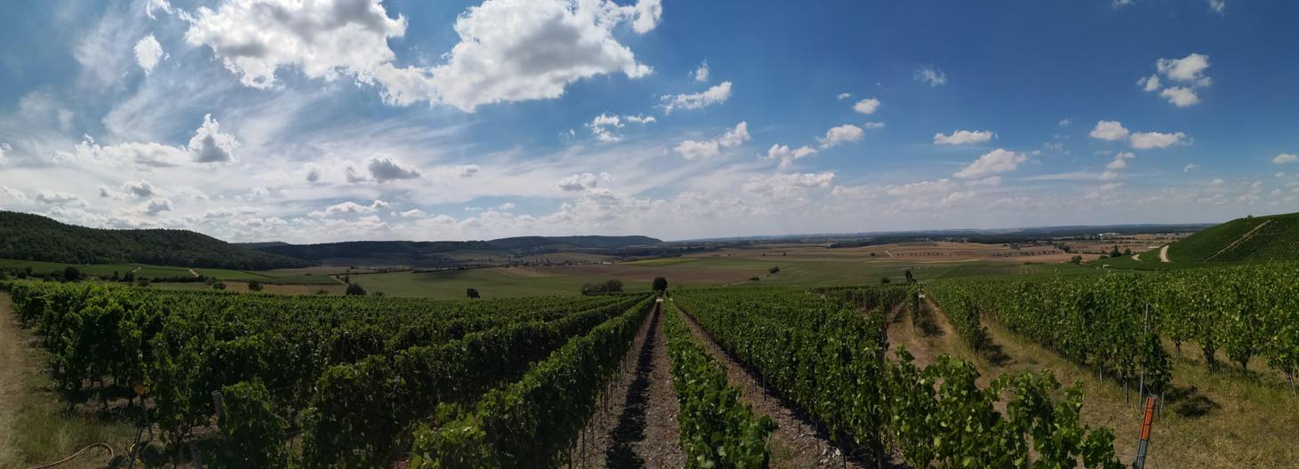Panoramablick Richtung Schwanberg