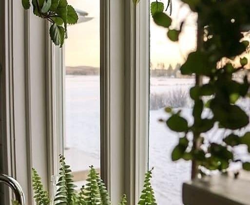 fönster-frokenfrida.jpg