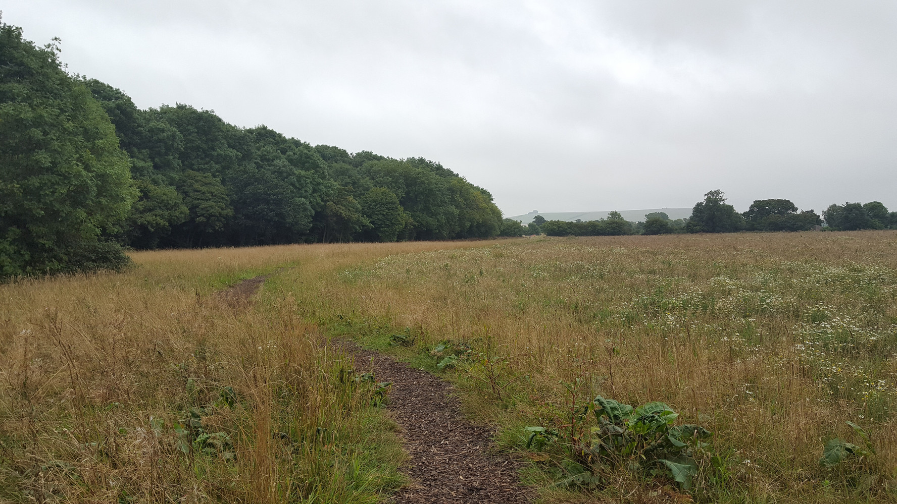 Badbury Park Primary School - School Site