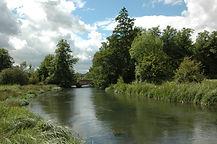 River Kennet.jpg