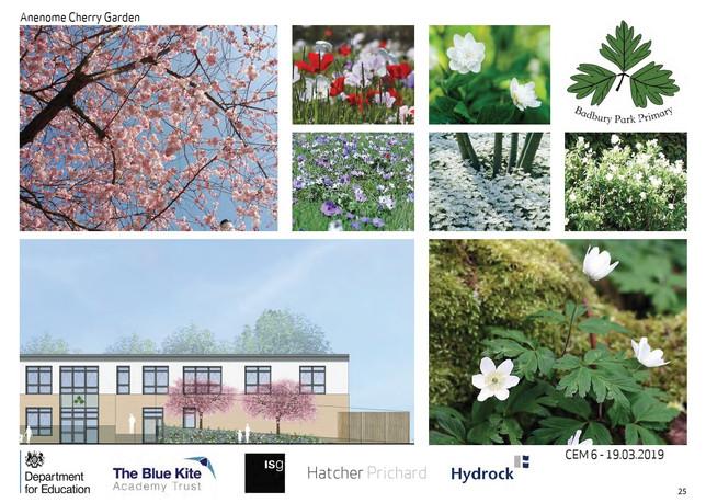 Anemone Cherry Garden.jpg