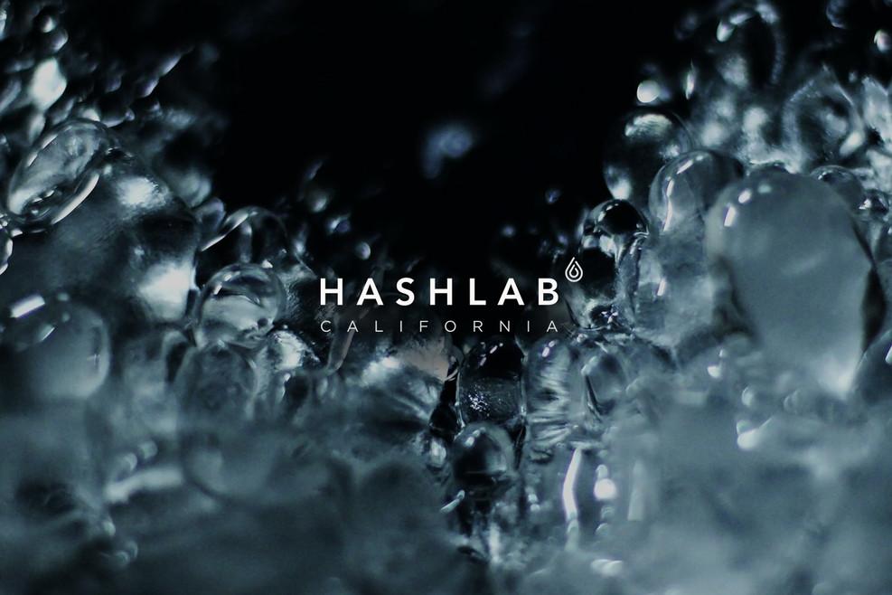 HashLab Logo
