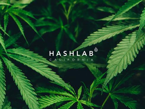 HashLab