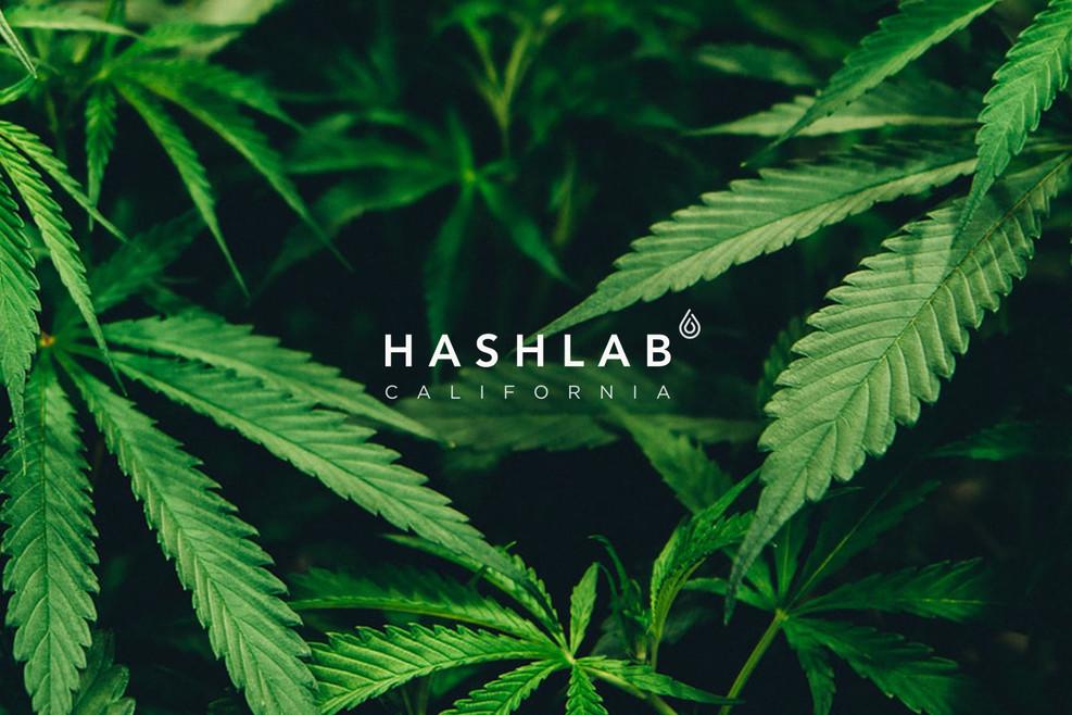hashlab.logo+maria copy.jpg