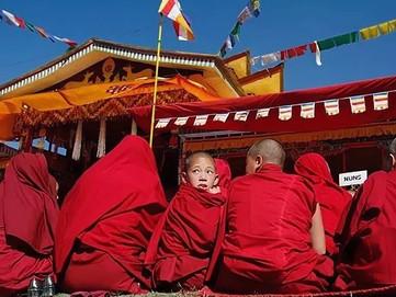 Buddhist Community - Sangha