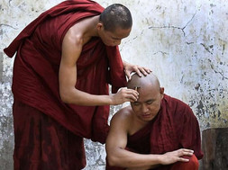 10 must-read for beginners to Buddhism
