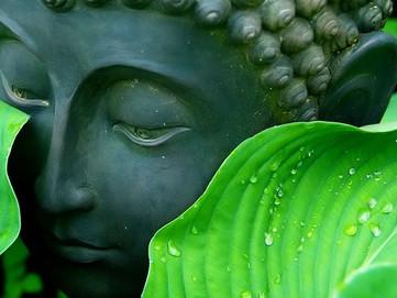 Purification of Negative Karma