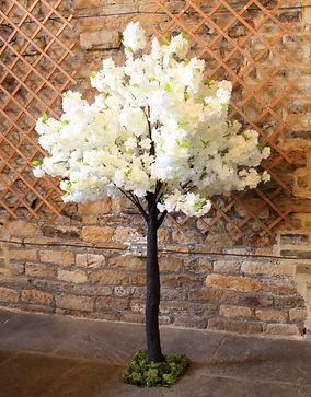2mt Ivory Blossom Tree.JPG