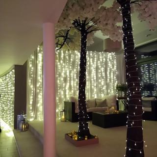 Fairy Light Room Dividers