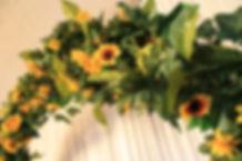 Sunflower Close Up.JPG