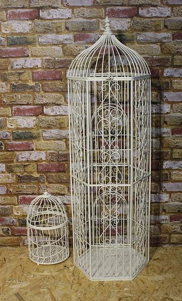 2 Birdcage.JPG