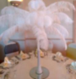 White Ostrich.jpg