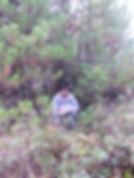 Kali in the woods_.jpg