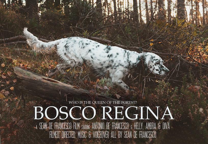 Bosco Regina Poster 2.jpg