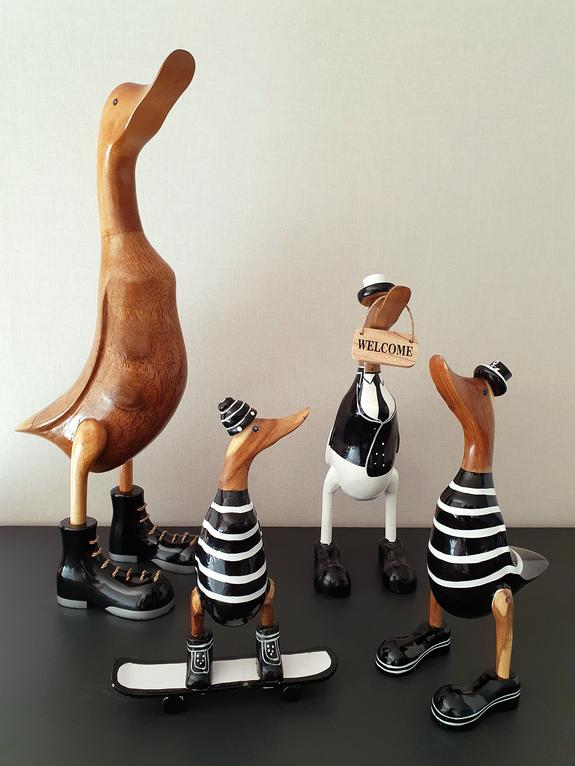 Canards en noir et blanc