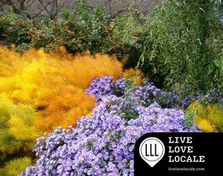 Tyler Arboretum, in the Heart of Delaware County & Greater Philadelphia, Featuring Ben Carr