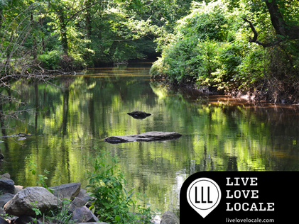 Explore Ridley Creek & Rose Tree Parks; Delaware County Woodlands only 16 Miles from Center City