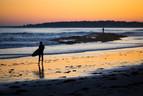 Surfing in Scarborough