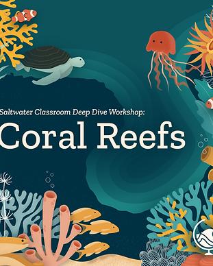 Coral_Reefs_Instagram.png