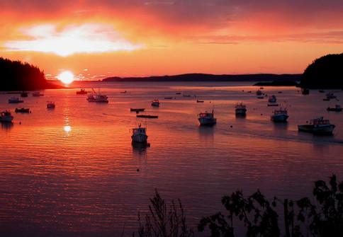 Dawn's Light on the Harbor