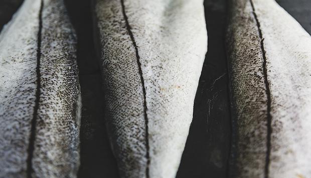 Haddock-Skins-Splash.png